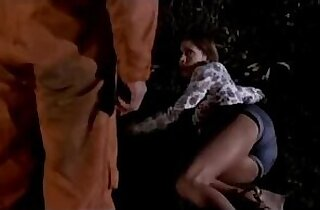 Sex Victim Teenager Jo Ann Harris is chosen as a suitable victim and brutally assaulted in a stable by a masked ravisher, who feels like violating her young body. Act of Vengeance 1974